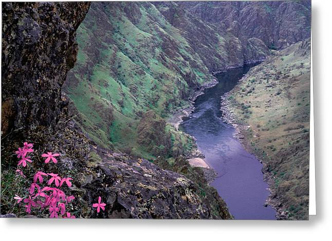 Hells Canyon Greeting Card