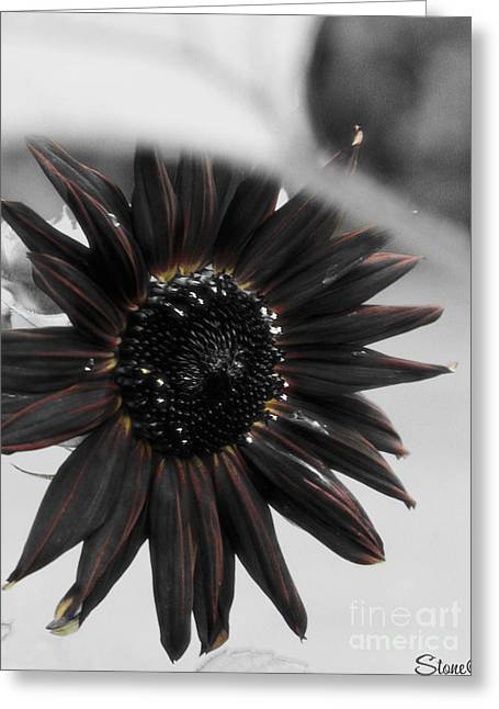 Hells Sunflower Greeting Card by September  Stone