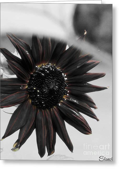 Hells Sunflower Greeting Card
