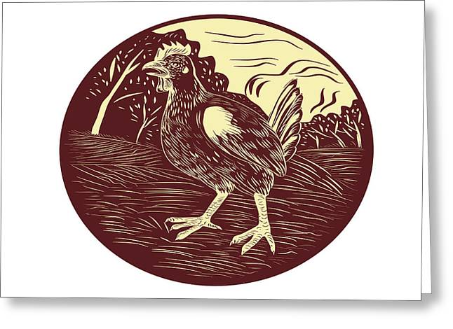 Hen Farm Oval Woodcut Greeting Card by Aloysius Patrimonio