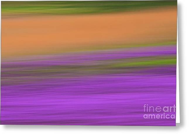 Henbit Abstract - D010049 Greeting Card
