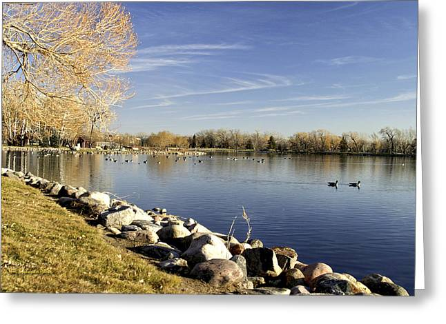 Henderson Lake Waiting For Winter Greeting Card