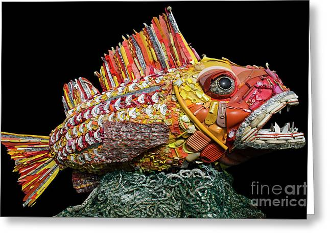 Henry The Fish Greeting Card by Bob Christopher