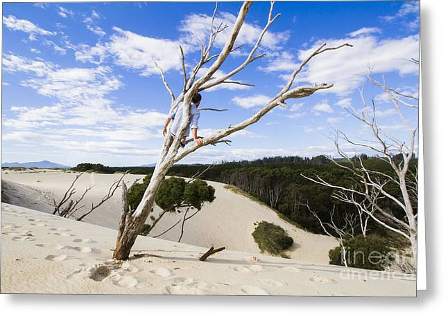 Henty Dunes Tourist Climbing Dead Tree Greeting Card by Jorgo Photography - Wall Art Gallery