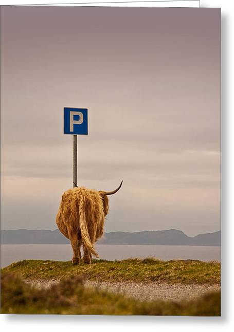 Her Favourite Pick-nick Spot In The Highlands Greeting Card