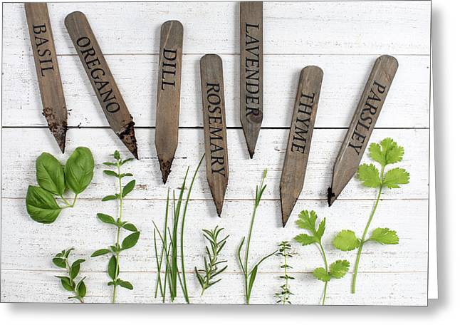 Greeting Card featuring the photograph Herbs by Rebecca Cozart