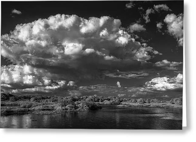 Herd Of Clouds Greeting Card by Jon Glaser