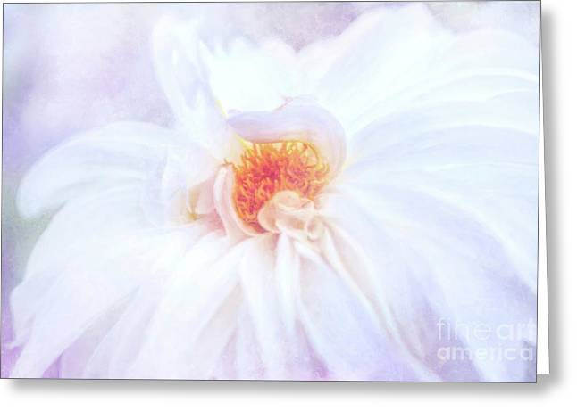 Here Comes The Bride - A Beautiful White Dahlia Greeting Card