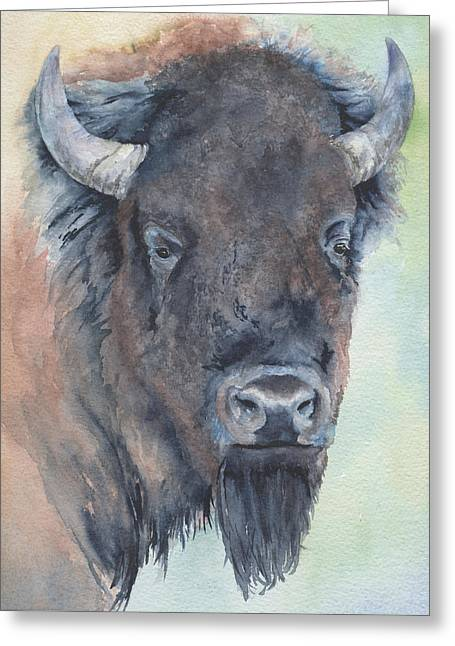 Here's Looking At You - Bison Greeting Card