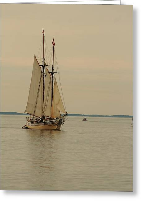 Heritage Sailing In Greeting Card by Doug Mills