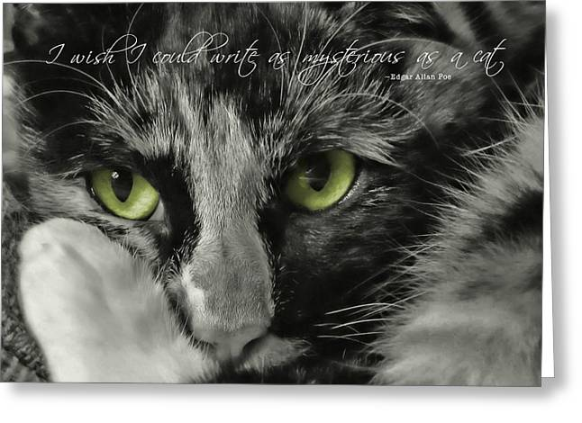 Hermione Quote Greeting Card by JAMART Photography