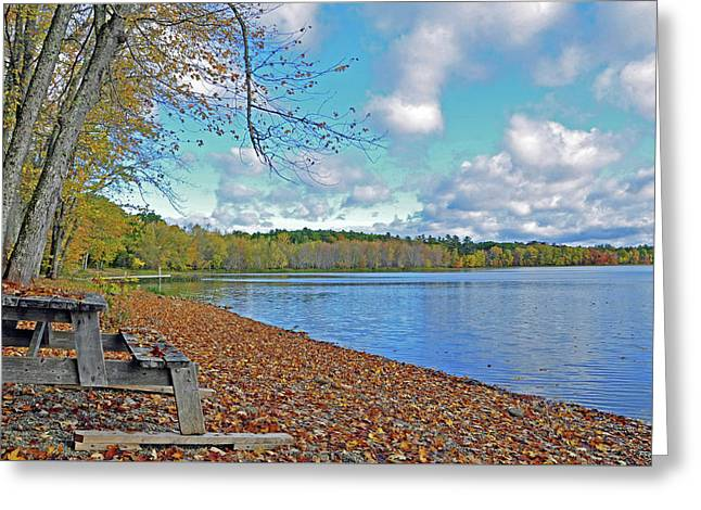 Fall Picnic In Maine Greeting Card
