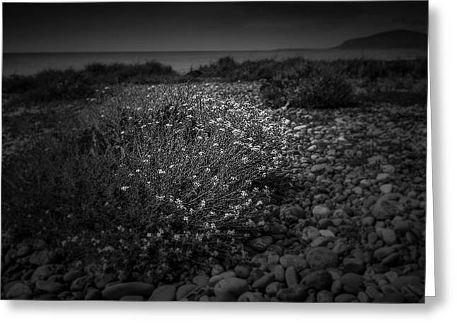 Hernsea Bay And Black Combe Greeting Card