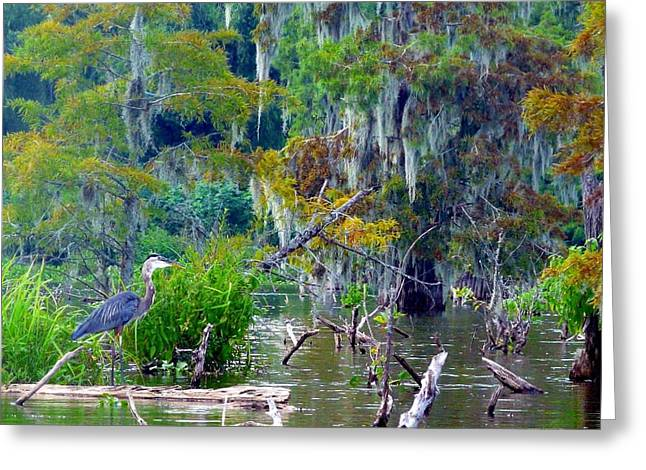 Heron Blues Greeting Card