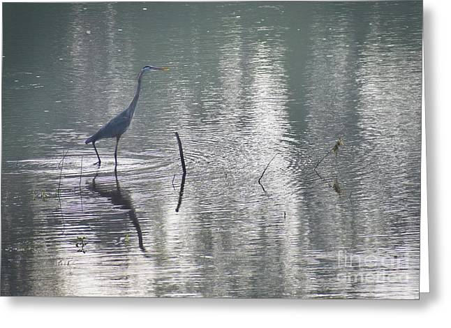 Greeting Card featuring the photograph Heron In Pastel Waters by Skip Willits