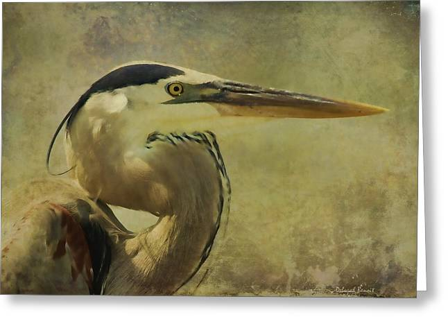 Deborah Benoit Greeting Cards - Heron On Texture Greeting Card by Deborah Benoit
