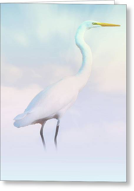 Heron Or Egret Stance Greeting Card
