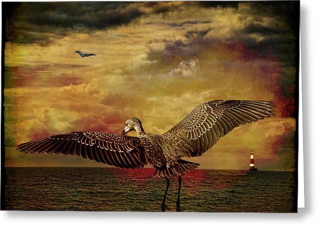 Herons Greeting Card by Chris Lord
