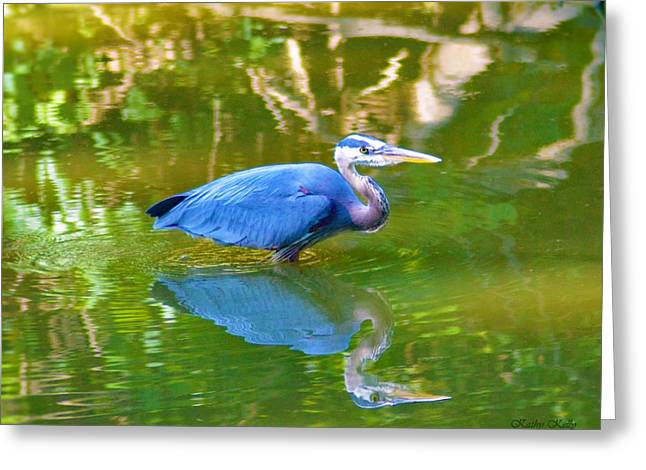 Heron's Reflection Greeting Card by Kathy Kelly