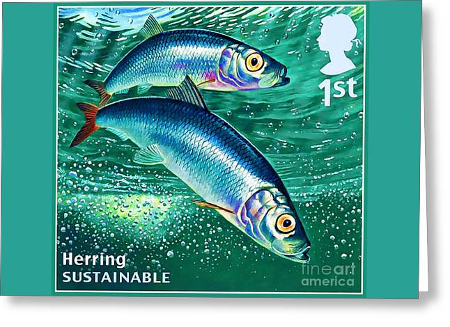 Herring Greeting Card