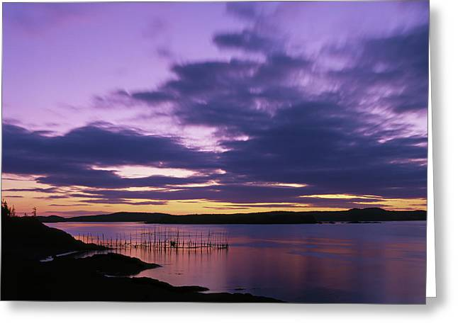 Herring Weir, Sunset Greeting Card
