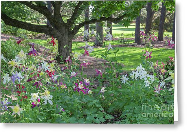 Greeting Card featuring the photograph Hershey Gardens 1 by Chris Scroggins
