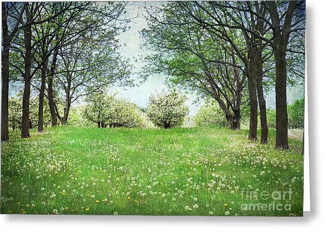 He's In The Orchard Greeting Card by Kathi Mirto