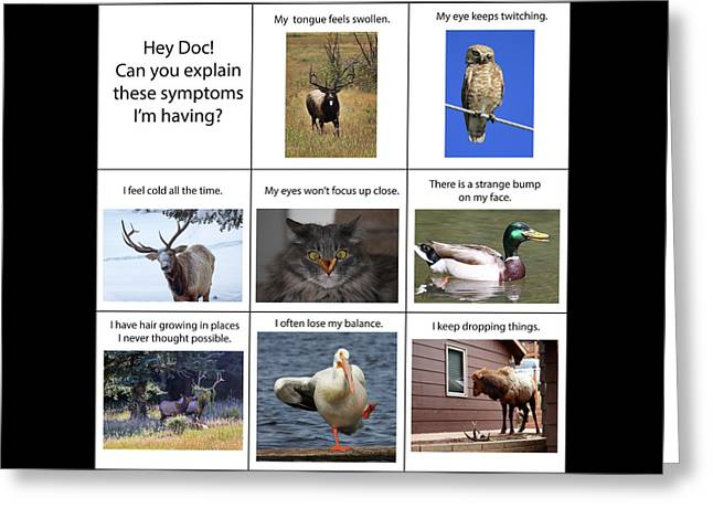 Greeting Card featuring the photograph Hey Doc by Shane Bechler