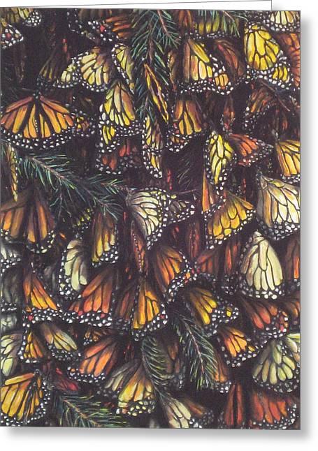 Hibernating Monarchs Greeting Card by Sam Pearson