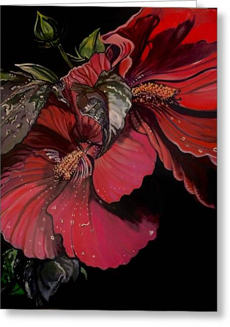Hibiscus After The Rain Greeting Card