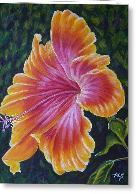Greeting Card featuring the painting Hibiscus by Amelie Simmons