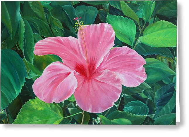 Greeting Card featuring the painting Hibiscus by Elizabeth Lock