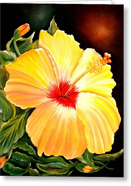 Hibiscus Glory Greeting Card