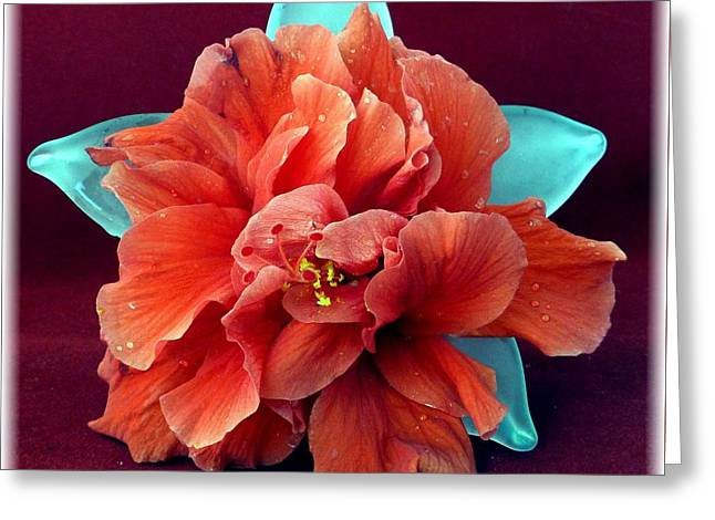 Hibiscus On Glass Greeting Card