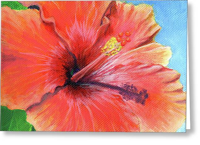 Hibiscus Passion Greeting Card
