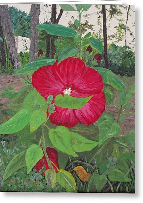 Hibiscus Greeting Card by Sharon  De Vore