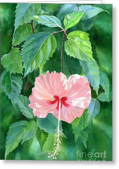 Hibiscus Sprinkle Rain With Leafy Background Greeting Card by Sharon Freeman
