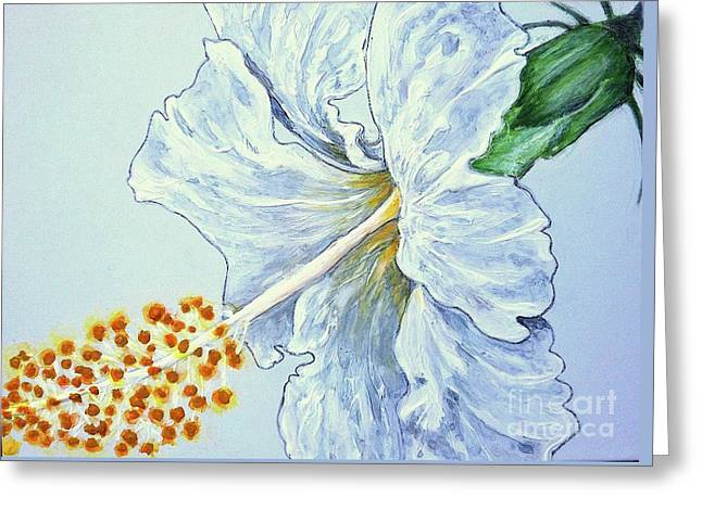 Hibiscus White And Yellow Greeting Card by Sheron Petrie