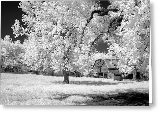 Hidden Barn Greeting Card by James Barber