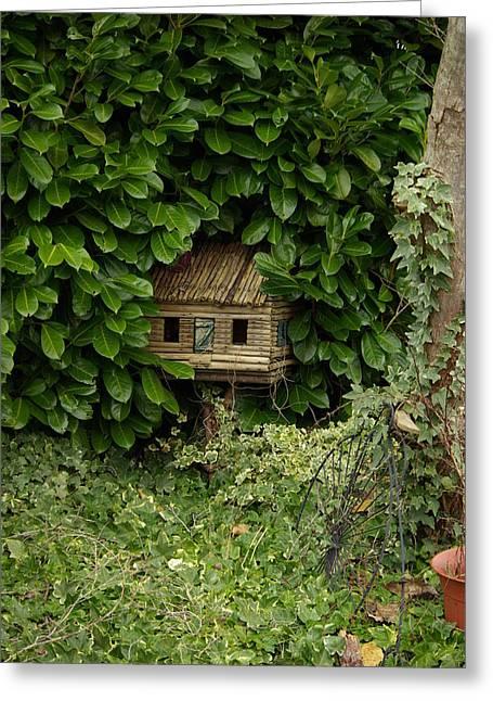 Hidden Birdhouse Greeting Card