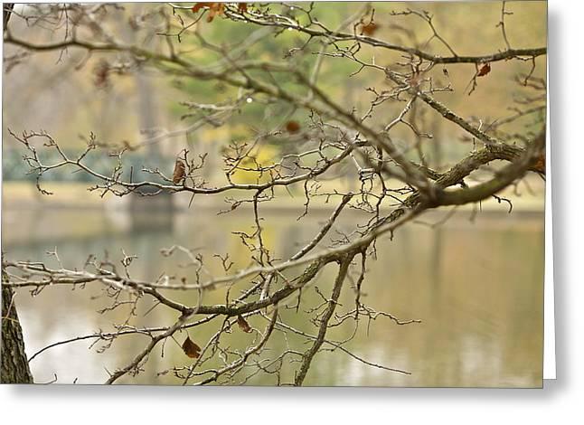 Hidden Bridge Greeting Card by Robert Joseph