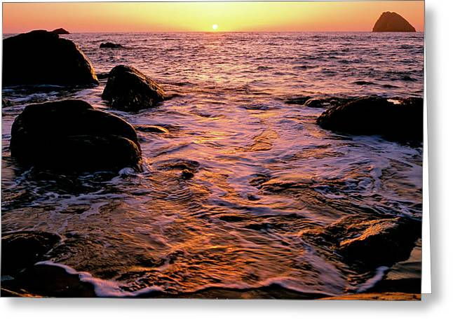 Hidden Cove Sunset Redwood National Park Greeting Card by Ed  Riche