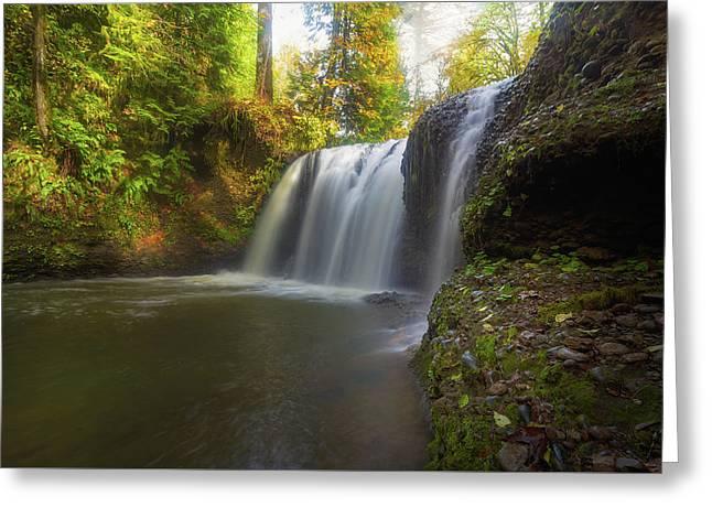 Hidden Falls In Rock Creek Greeting Card by David Gn