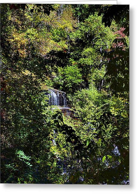 Hidden Falls Greeting Card by Skip Willits