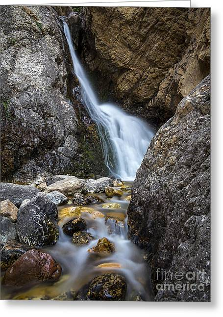 Hidden Falls Greeting Card by Spencer Baugh