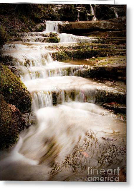 Hidden Falls Greeting Card by Tamyra Ayles