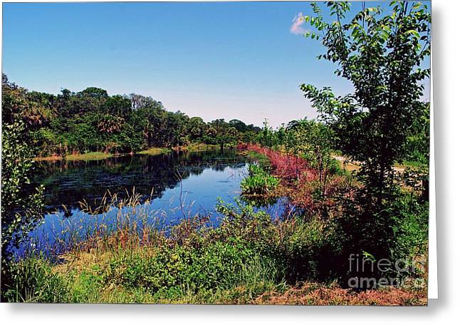 Greeting Card featuring the photograph Hidden Lake by Gary Wonning