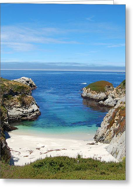Hidden Paradise Greeting Card by Pearson Photography