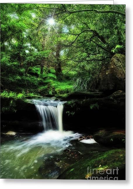 Hidden Rainforest - Painterly Greeting Card