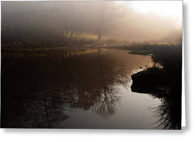 Hidden Reflections Greeting Card by Miguel Winterpacht